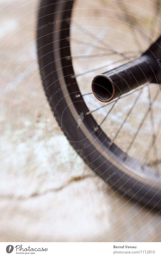 Peg to the roots Fahrrad hell Dynamik BMX Achse Verlängerung Stahl Eisenrohr Felge Reifen Speichen Rad Trick Stunt schwarz braun lensbaby Verzerrung Linse rund
