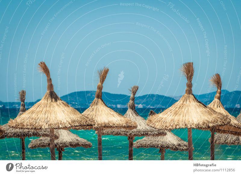 Strandurlaub Ferien & Urlaub & Reisen Sommer Sonne Erholung Meer Freude Strand Reisefotografie Schwimmen & Baden Lifestyle Wellen Insel genießen Coolness Sonnenbad Mallorca