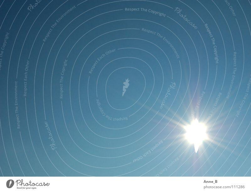 Hell strahlt die Sonne Natur schön Himmel weiß Sonne blau ruhig glänzend Stern Stern (Symbol) leuchten Schönes Wetter blenden Blauer Himmel strahlend himmelblau