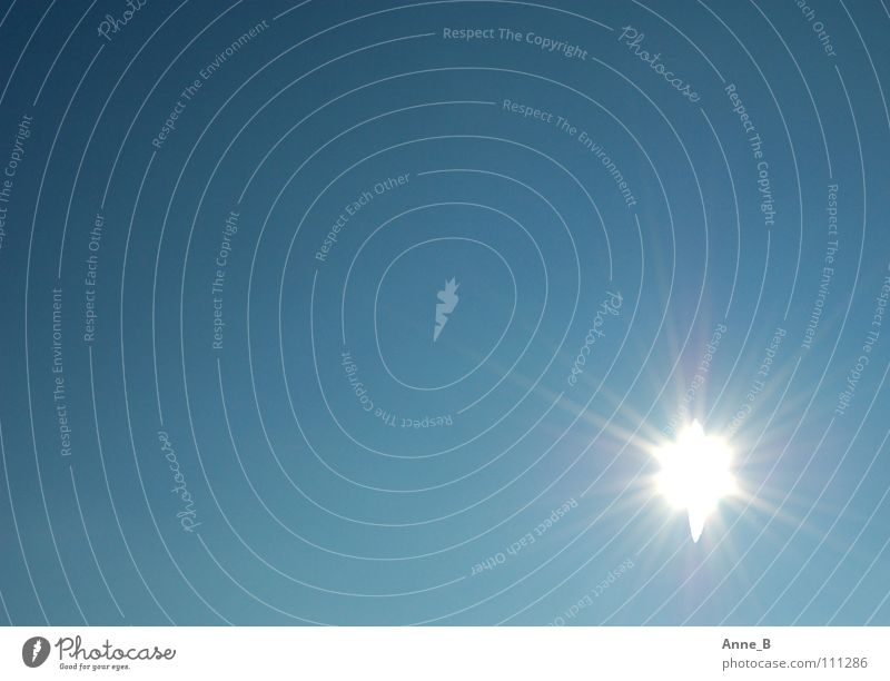 Hell strahlt die Sonne Natur schön Himmel weiß blau ruhig glänzend Stern Stern (Symbol) leuchten Schönes Wetter blenden Blauer Himmel strahlend himmelblau