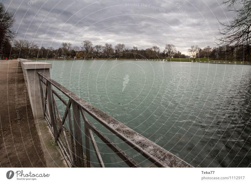 Aachener Weiher Winter Umwelt Natur Landschaft Pflanze Seeufer Teich Abenteuer ästhetisch Zufriedenheit Köln Gedeckte Farben Außenaufnahme Menschenleer Tag