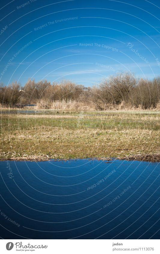 dreiteiler. Angeln Umwelt Natur Landschaft Pflanze Erde Wasser Himmel Wolken Frühling Feld Seeufer frisch nass blau gleich Fluss Niveau buschland Farbfoto