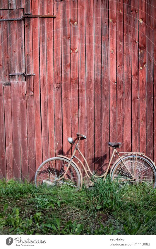 angelehnt Wiese Fahrrad Hütte Scheune Holz retro grün rot Frühlingsgefühle Gelassenheit ruhig alt gebraucht Farbfoto mehrfarbig Außenaufnahme Menschenleer