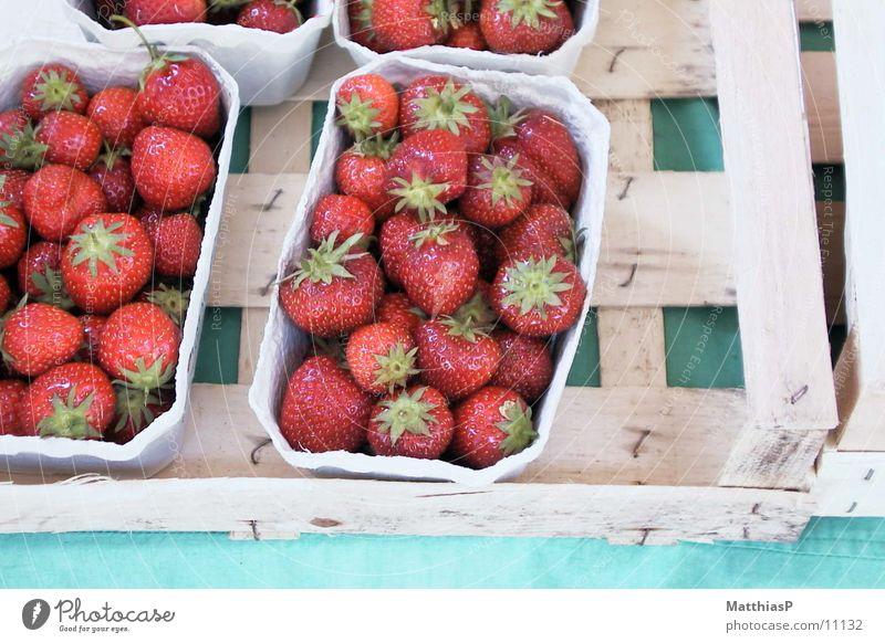 Erdbeeren frisch Europa Deutschland rot Großmarkt Frucht Sommer Qualität Garten garden red strawberry Markt