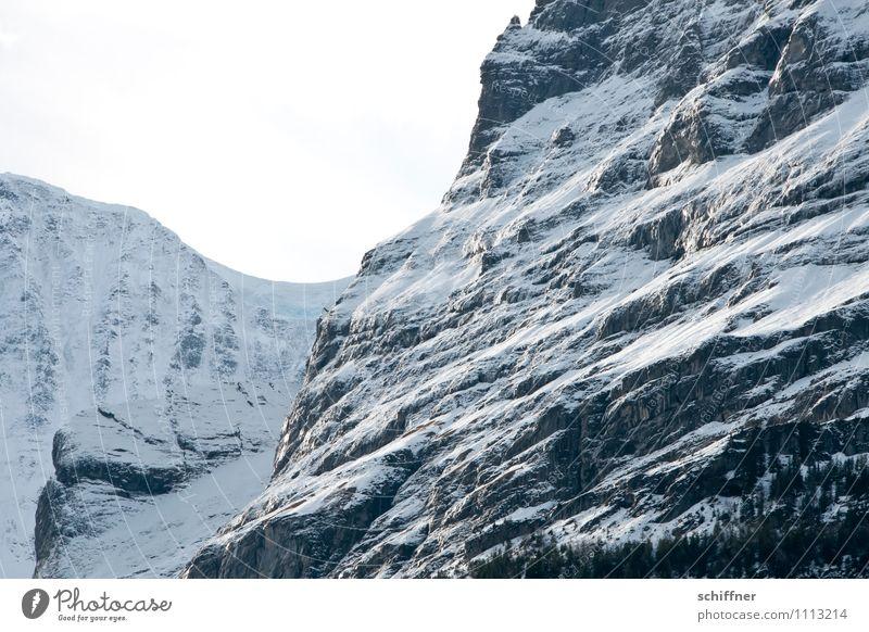 oh Schreck, die Steilwand! Natur kalt Berge u. Gebirge Schnee Felsen Eis Schönes Wetter Alpen Schneebedeckte Gipfel steil alpin Felswand Schreckhorn