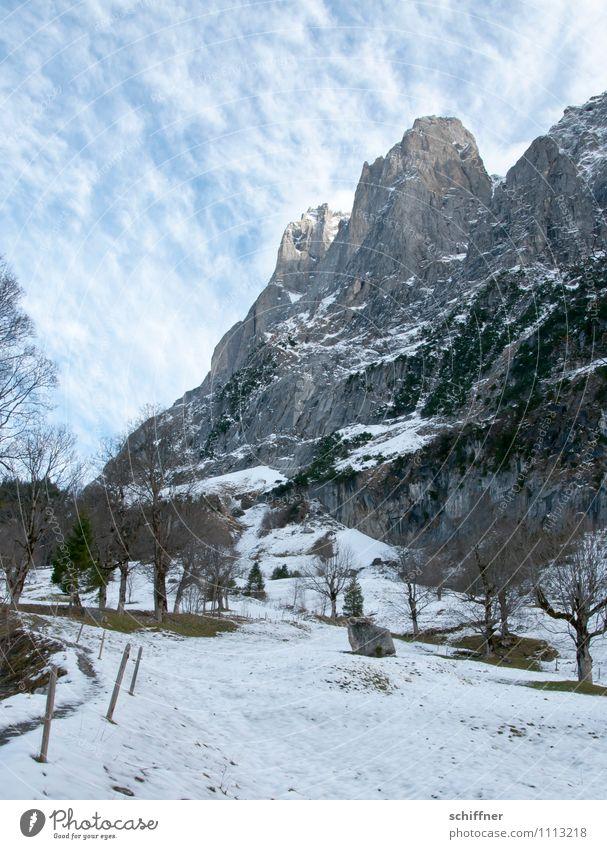 Himmelsstaub II Natur Baum Landschaft Wolken kalt Umwelt Berge u. Gebirge Schnee Felsen Eis Schönes Wetter Gipfel Frost Alpen Schneebedeckte Gipfel Klimawandel