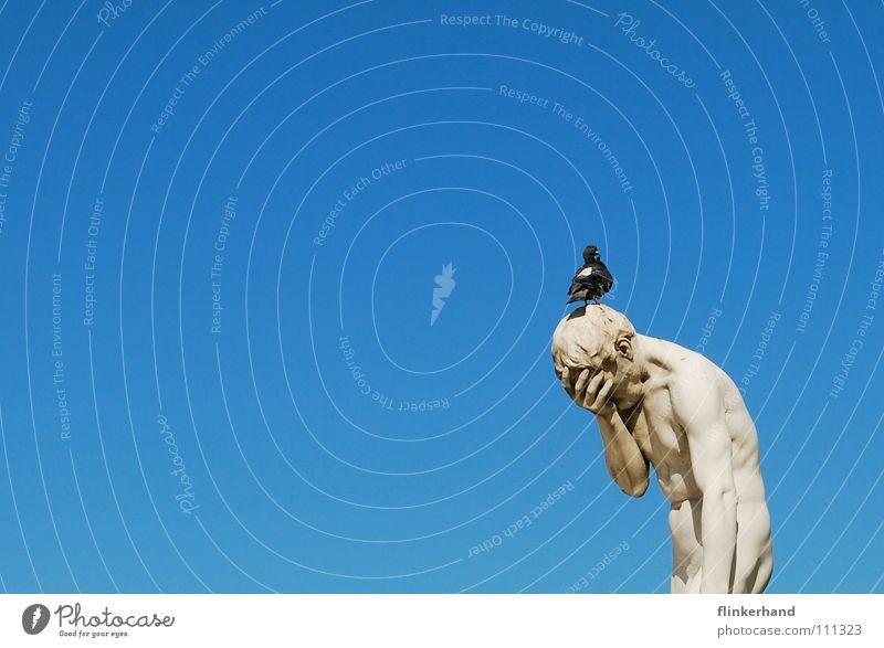 respektlos II Mensch Himmel Mann blau weiß Sommer Wolken Tier Erwachsene Kunst Vogel Körper Trauer Schönes Wetter Paris Statue