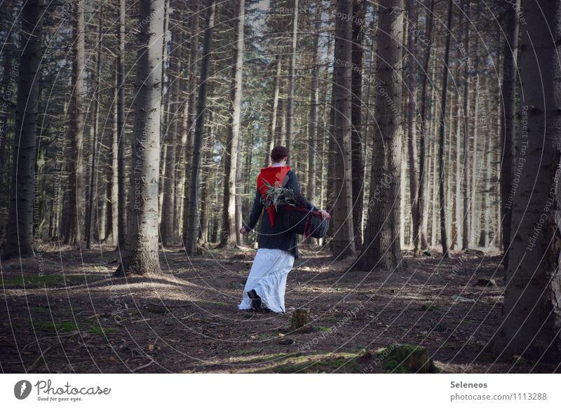 Ich geh dann mal Pilze sammeln Mensch Frau Erwachsene 1 Umwelt Natur Herbst Wald Kleid Mantel Mütze Nikolausmütze Korb natürlich Spaziergang ansammeln Farbfoto