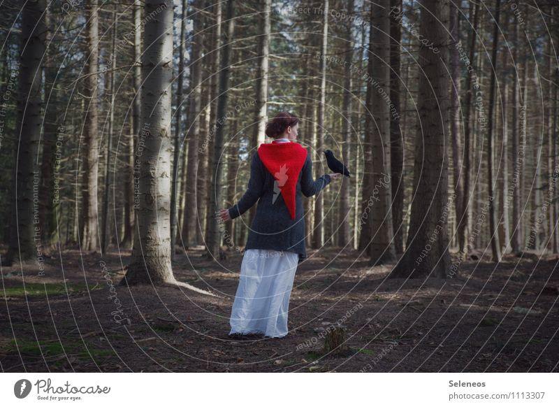 Rotmütze Mensch feminin Frau Erwachsene 1 Umwelt Natur Frühling Herbst Baum Wald Mütze Vogel Tier frei natürlich Farbfoto Außenaufnahme Ganzkörperaufnahme