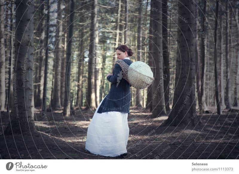 Eierdieb Frau Mensch Natur Baum Wald Erwachsene Umwelt feminin Stimmung Abenteuer schlechtes Wetter