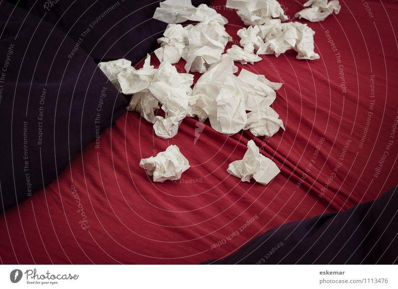 Schnupfen weiß rot Wohnung authentisch Bett violett Erkältung Krankheit Bettdecke Taschentuch Kopfkissen Infektion