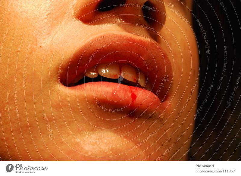 gingiva crudus Lippen Zahnfleisch gefährlich blutrünstig Vampir böse beängstigend Angst schwarz rot Abfluss spritzen fatal Nasenbluten Furche gruselig perfekt