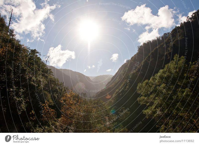 #1113692 Himmel Natur Ferien & Urlaub & Reisen Pflanze Sommer Sonne Baum Landschaft Wolken Ferne Wald Berge u. Gebirge Umwelt Freiheit Tourismus Sträucher