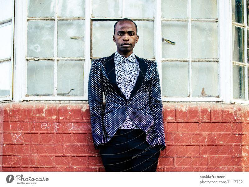 Success. Mensch Jugendliche schön Junger Mann Haus 18-30 Jahre Erwachsene Wand Architektur Stil Mauer Lifestyle Kunst Mode Fassade maskulin