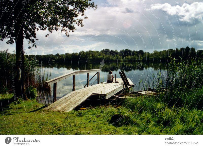 Adagio Erholung ruhig Ferne Sommer Junge Frau Jugendliche 1 Mensch Umwelt Natur Landschaft Pflanze Wasser Wolken Horizont Klima Schönes Wetter Gras Seeufer
