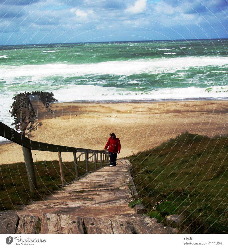 heute ist kein badewetter gehen steigend Klettern aufsteigen Horizont Meer Strand Wind Naturgewalt Holz festhalten Halt grün Wolken schlechtes Wetter verweht