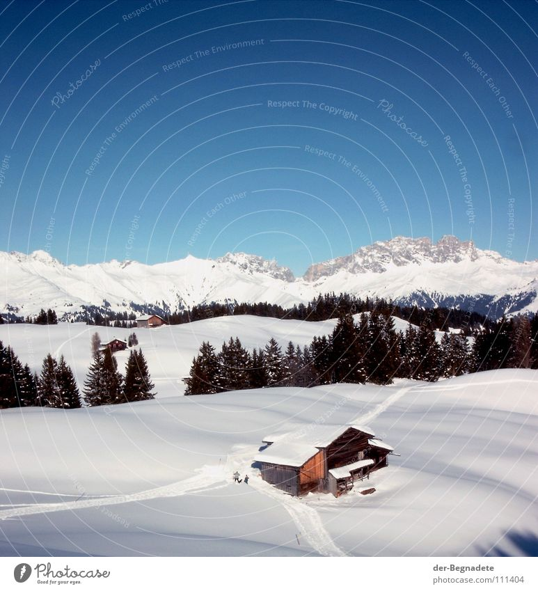 Bergidylle IV Himmel weiß Baum blau Winter Wald kalt Schnee Berge u. Gebirge Wege & Pfade Landschaft braun Dach Schweiz Klarheit Alpen