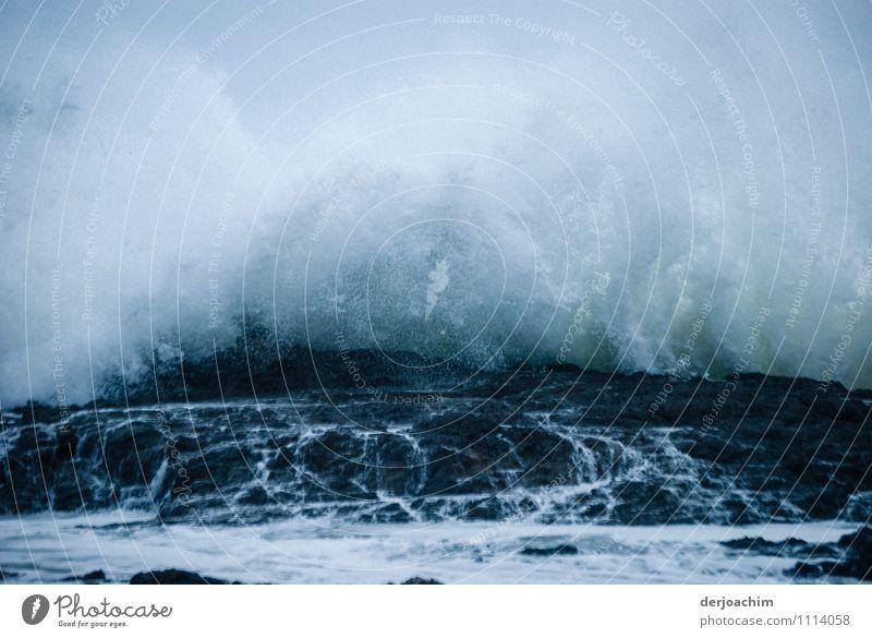 Kraft / 365 Tage Brandung schön weiß Wasser Sommer Meer Freude Leben außergewöhnlich Felsen Kraft Wellen ästhetisch fantastisch beobachten Vergänglichkeit einzigartig