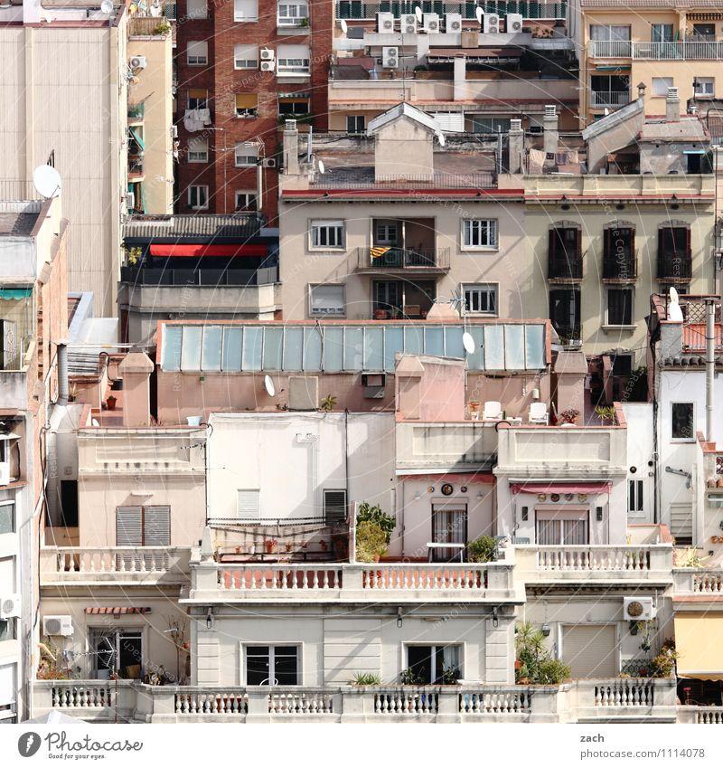 100 Leben Städtereise Topfpflanze Barcelona Spanien Stadt Stadtzentrum Altstadt überbevölkert Menschenleer Haus Gebäude Architektur Mauer Wand Treppe Fassade