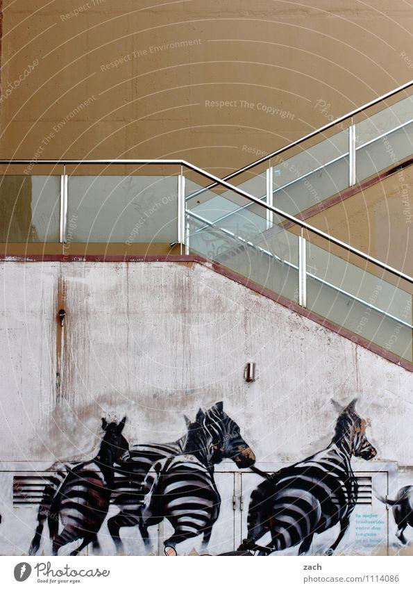 Kraft | durch die Wand Stadt weiß Haus Tier Graffiti Architektur Wege & Pfade Mauer Linie braun springen Fassade Treppe Angst elegant