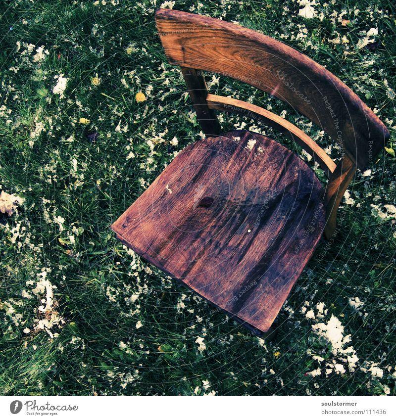 Sitzplatz - einige Monate später I alt weiß grün ruhig Blatt Einsamkeit kalt Schnee Erholung Wiese Holz braun dreckig Wetter nass Rasen