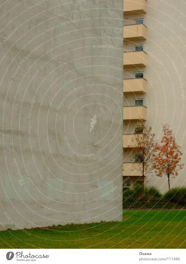 Ausweg aus der Spaßgesellschaft Baum grün Stadt Winter Haus Herbst Wiese Wand Gras grau Stein Traurigkeit Mauer Gebäude Angst
