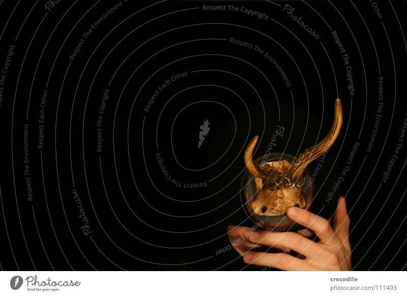 wolpertinger ll Hirsche Horn Hand grell dunkel frontal gefährlich Finger Tarnung Trauer Verzweiflung Angst Schutz Mund Sturmhaube Auge bedrohlich getarnt Jagd