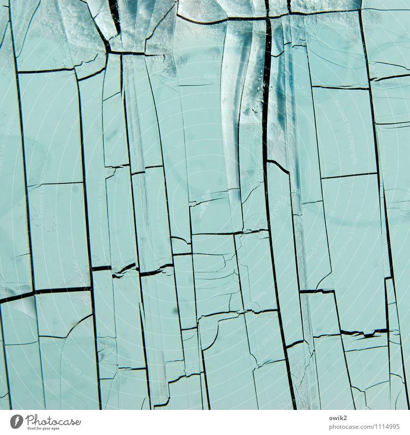 Formblatt Kunstwerk Kunststoff dehydrieren alt trist trocken Rätsel Vergänglichkeit Klebefolie Folie Riss bizarr Farbfoto Außenaufnahme Nahaufnahme