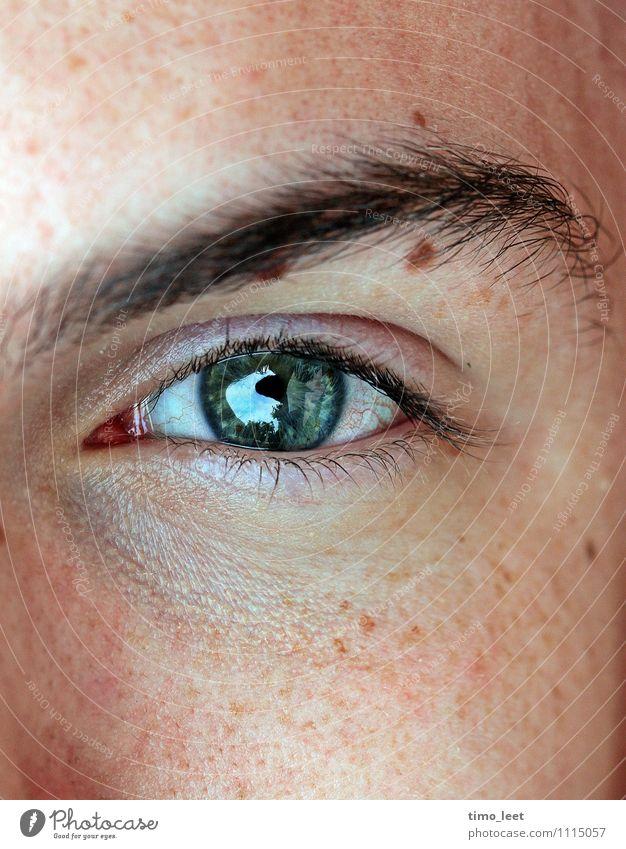Durchschau mich! Mensch Jugendliche Junger Mann 18-30 Jahre kalt Erwachsene Gesicht Auge natürlich Kopf glänzend träumen maskulin authentisch Neugier nah