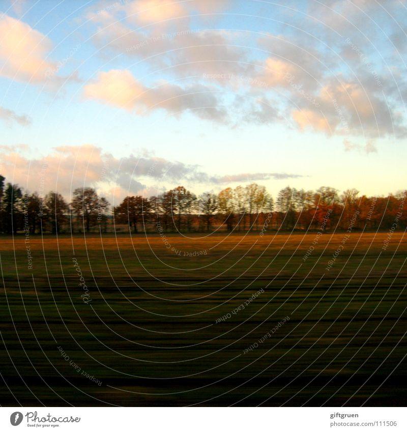 herbstlandschaft I Herbst Herbstlandschaft Blatt mehrfarbig Jahreszeiten Feld Baum Wolken Vergänglichkeit Oktober November grün Wiese Gras schlechtes Wetter
