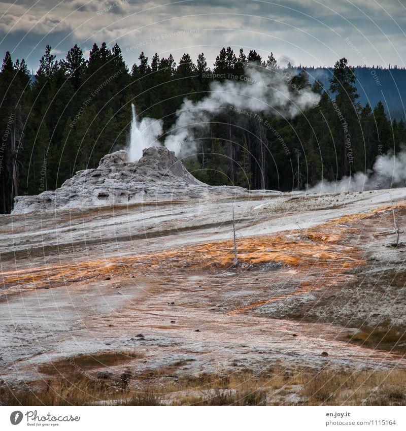 Druck ablassen Ferien & Urlaub & Reisen Tourismus Abenteuer Umwelt Natur Landschaft Urelemente Wolken Klima Klimawandel Wald Vulkan Heisse Quellen Geysir