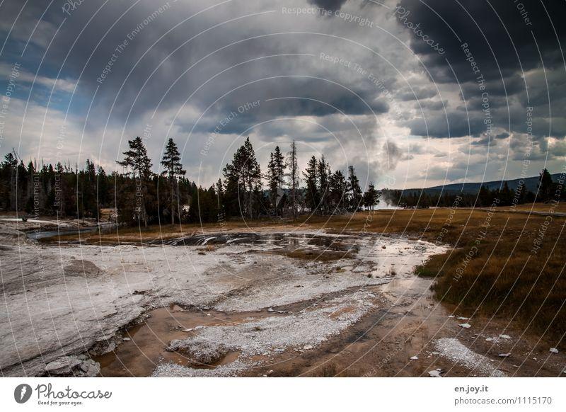 Es wird Regen geben. Natur Ferien & Urlaub & Reisen Landschaft dunkel Wald Wetter Tourismus Klima gefährlich bedrohlich Abenteuer USA heiß Unwetter Amerika