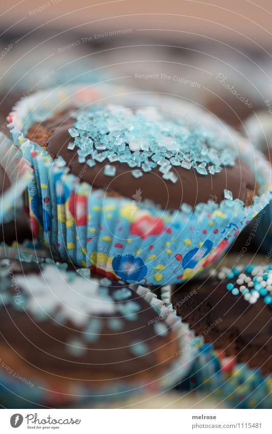 Schokomuffins VI Lebensmittel Teigwaren Backwaren Kuchen Süßwaren Schokolade Ernährung Essen Kaffeetrinken Muffinspapierförmchen Geburtstagstorte Stil Design