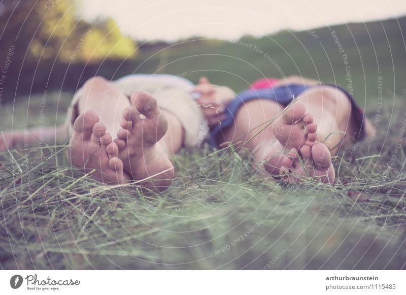 Füße im Heu Mensch Natur Ferien & Urlaub & Reisen Jugendliche Sommer Junge Frau Freude Junger Mann 18-30 Jahre Wald Erwachsene Liebe Wiese feminin Frühling