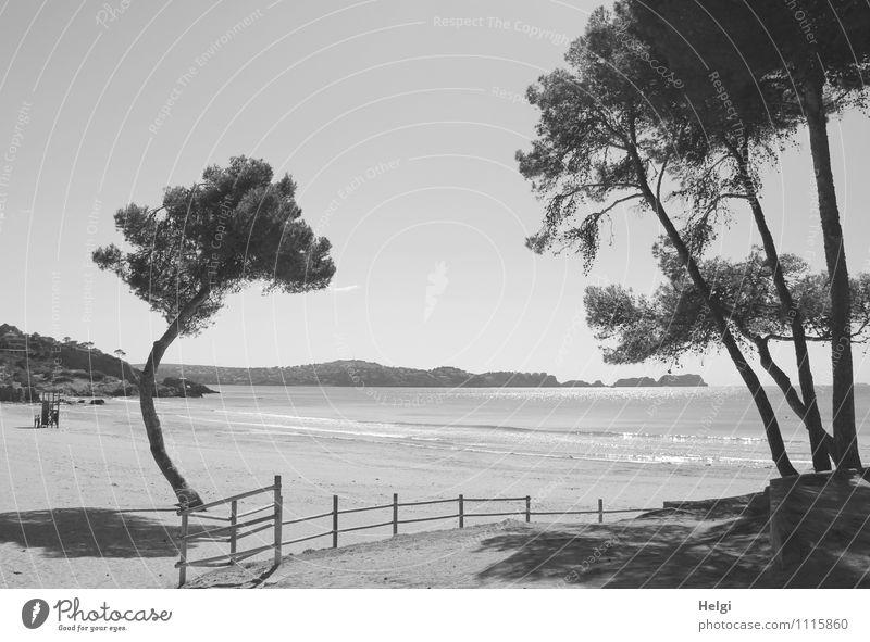 einsamer Strand... Natur Ferien & Urlaub & Reisen Pflanze weiß Wasser Baum Meer Landschaft ruhig schwarz Umwelt Berge u. Gebirge Frühling natürlich Küste