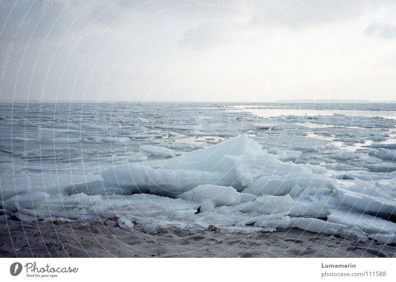 Stummer Strand ruhig Meer Winter Schnee Sand Wasser Himmel Horizont Klima Klimawandel Wetter Eis Frost Küste Ostsee frieren Traurigkeit warten kalt Spitze trist