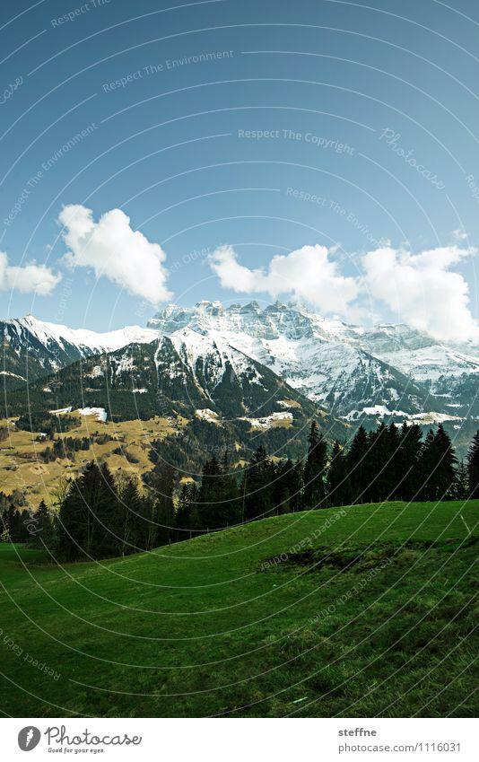 alpin Landschaft Himmel Wolken Frühling Winter Schönes Wetter Baum Wiese Wald Alpen Berge u. Gebirge Gipfel Schneebedeckte Gipfel Tourismus