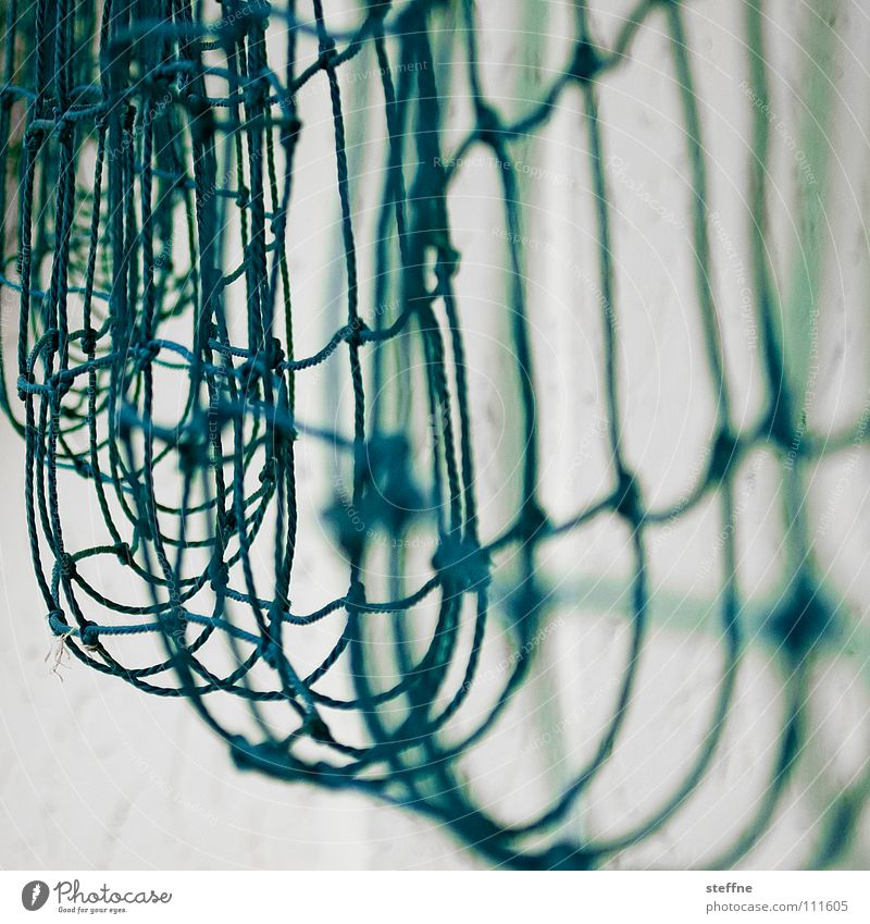 Network weiß grün Spielen Seil Netzwerk Kommunizieren Schnur Ball Kontakt Gesellschaft (Soziologie) Teamwork Partnerschaft Karriere Fischereiwirtschaft Knoten