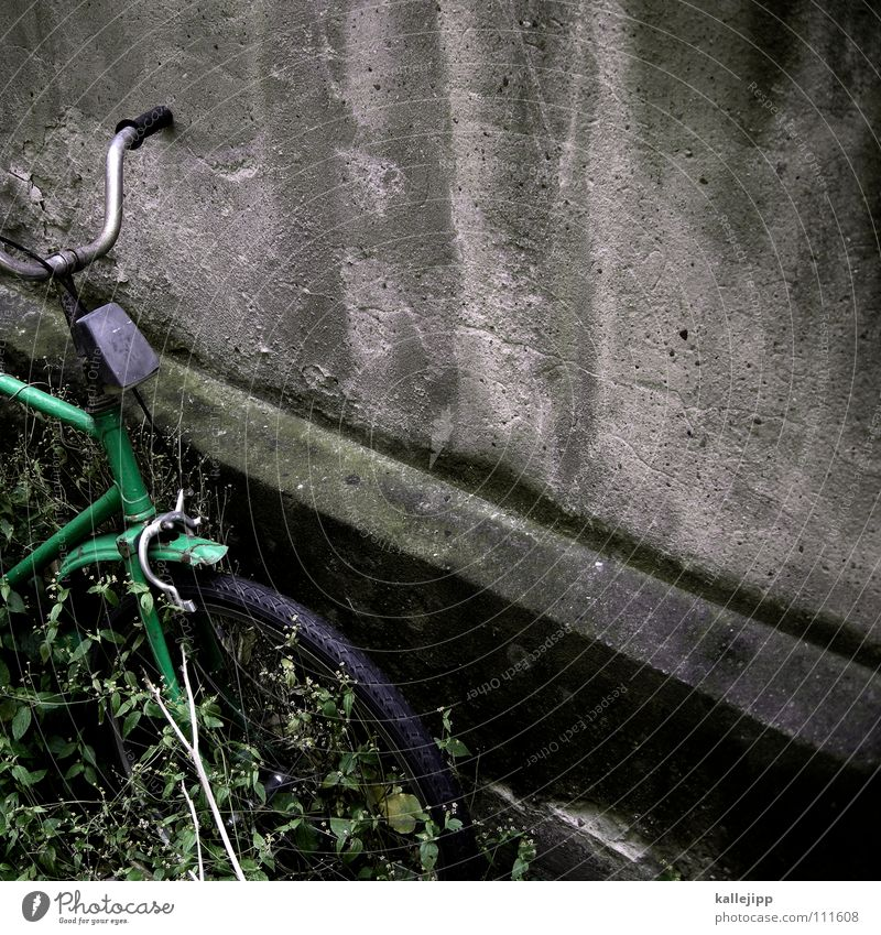 grün hat vorfahrt Fahrrad Oldtimer Rad Gummi Ständer Mauer Rücklicht Hinterhof Kotflügel Felge Speichen Chrom Gras Schlauch Mantel Lampe Vergänglichkeit prifiel