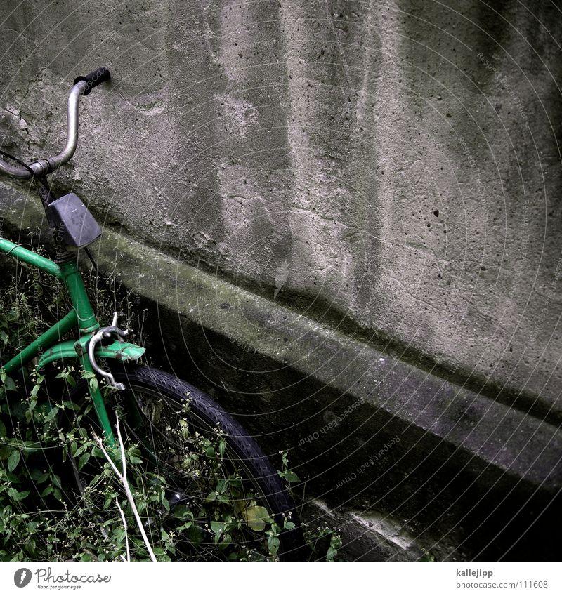 grün hat vorfahrt Gras Mauer Lampe Fahrrad Vergänglichkeit Bauernhof Rad Sitzgelegenheit Mantel Hinterhof Schlauch Oldtimer Gummi Chrom Rücklicht