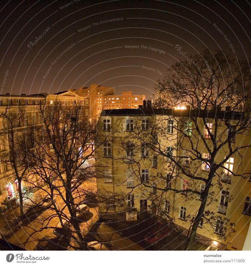 Zentrum bei Nacht Baum Stadt Winter Haus Einsamkeit Farbe Fenster Stimmung Raum Beleuchtung Wohnung leer Dach Mitte Bauernhof Etage