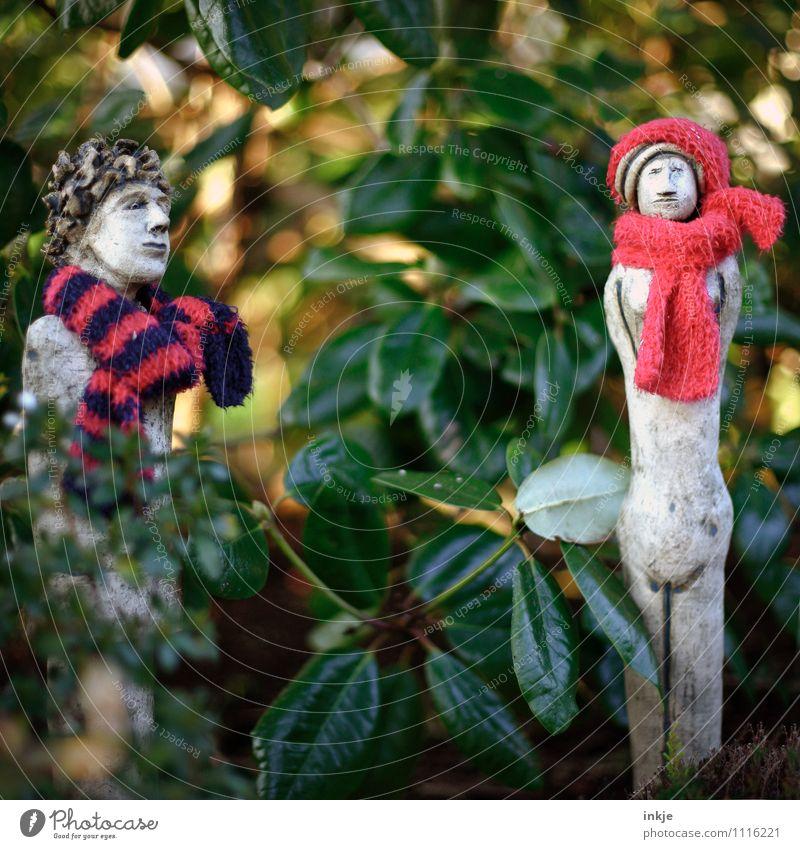Es ist kalt im Garten Eden Natur Pflanze Blatt Winter Wärme Herbst Stil Lifestyle Zusammensein Wetter Freizeit & Hobby stehen Klima Hilfsbereitschaft