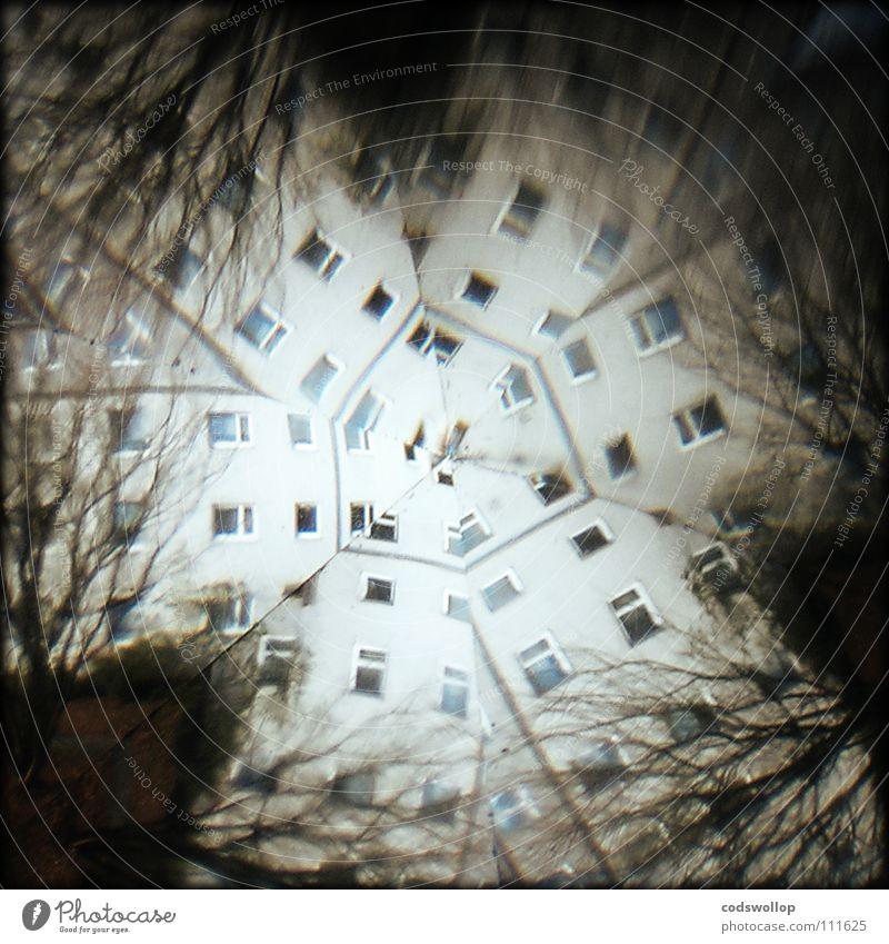 wahrnehmungsstörung Baum Haus Fenster träumen Wohnung Ausflug Regenschirm Wissenschaften obskur Alkoholisiert Rausch Spinne durcheinander Verzerrung