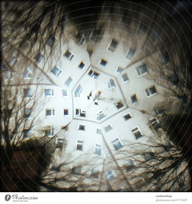 wahrnehmungsstörung Haus träumen durcheinander Reflexion & Spiegelung Wohnung Kaleidoskop Alptraum Regenschirm Vorstadt Baum Schwindelgefühl durchdrehen