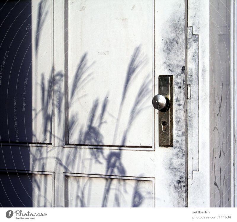 Tür Eingang Ausgang Knauf Türknauf Schlüssel aufschließen Gras Detailaufnahme obskur Häusliches Leben türblatt Burg oder Schloss schlüsselkind Schatten Riedgras
