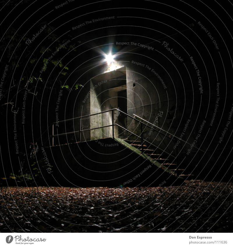 Blair Witch Bunker Baum Blatt Einsamkeit Herbst Mauer Lampe Park Tür Angst Treppe verfallen Tor gruselig Eingang Panik unheimlich