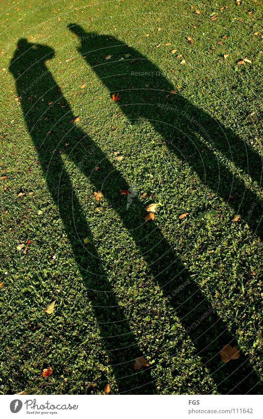 Kung Fu Fitghting #4 Mensch grün schön Sonne Freude Blatt Wiese Herbst Wärme Gras lustig 2 Feste & Feiern Wetter gehen Geschwindigkeit
