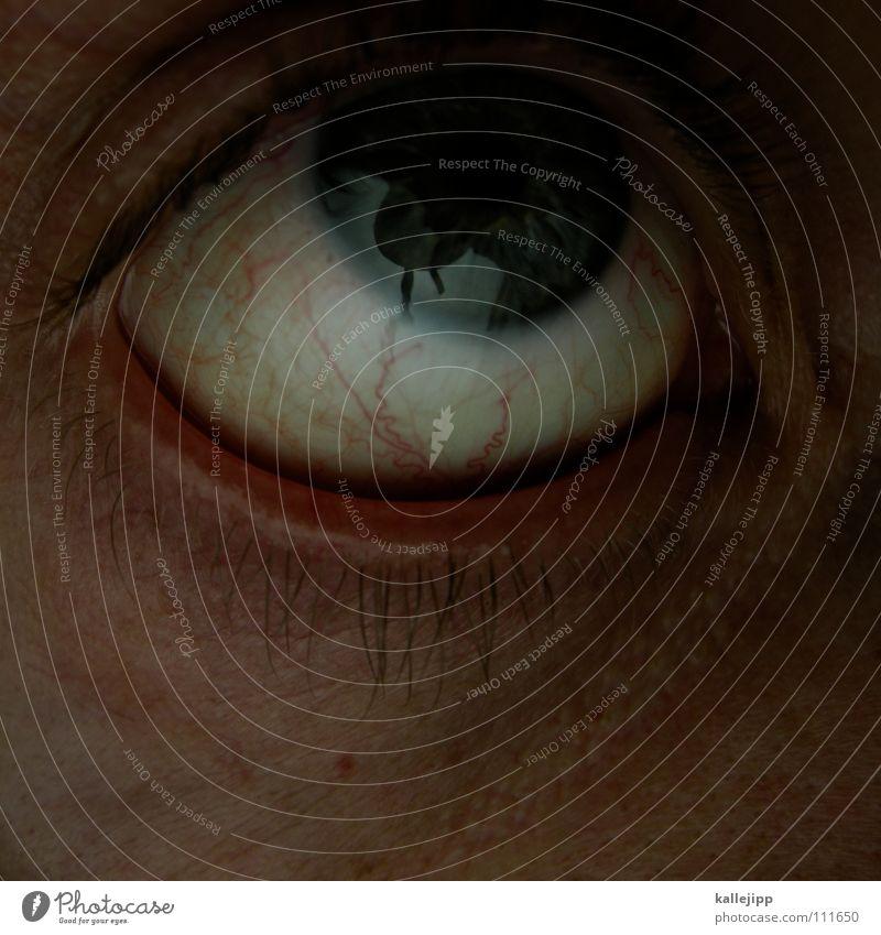 ein apfel fällt nicht weit vom stamm Mensch Mann blau Auge Leben Gefühle Tod Haare & Frisuren Angst Haut nah Ende schreien Lebewesen Falte Flucht