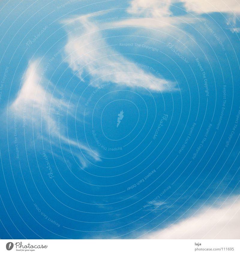 Tanz der Wolken Himmel blau weiß Sommer Wolken Tanzen Luftverkehr Schwerelosigkeit Cirrus