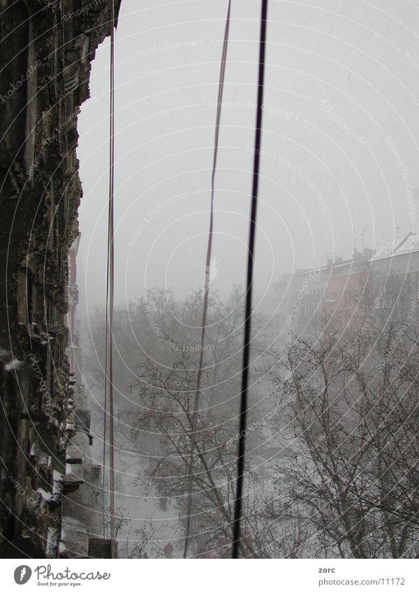 berlinwinter Stadt Winter Architektur Berlin alt Schnee